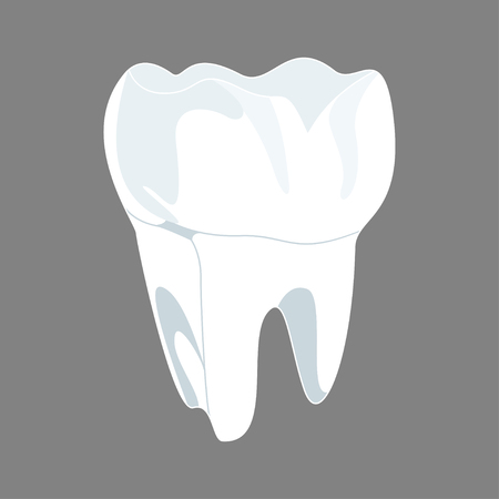 White tooth 3D render. Dental, medicine and health concept design. Vector illustration