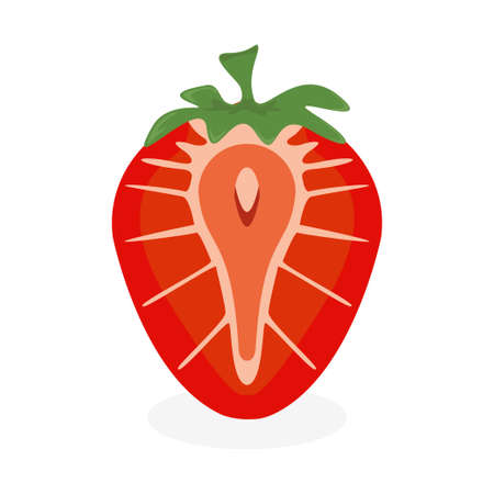 Cutaway strawberry icon. Fruit and organic food concept