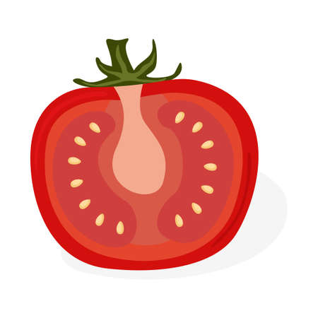 Tomato cuted icon cut vector illustration design isolated