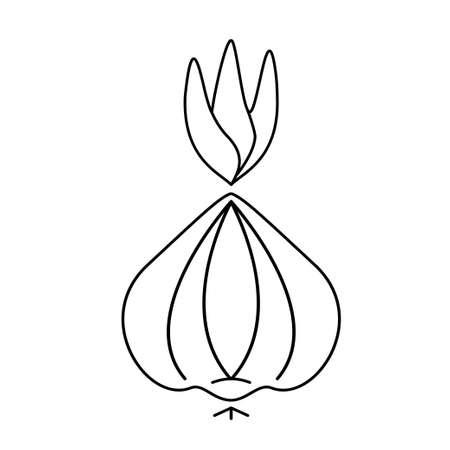 Onion icon line design vector illustration design 向量圖像