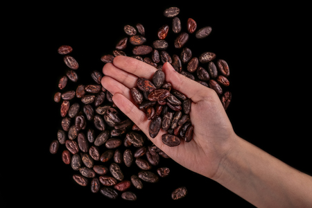Roasted beans. Cocoa beans isolated on black background. Standard-Bild