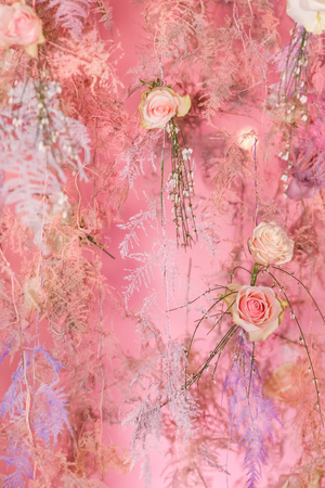 Background decoration of pink roses. Valentine's Day. 8 March Standard-Bild