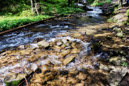 caucas: Mountain River on the way to Mount Hoverla Karpaty Ukraine