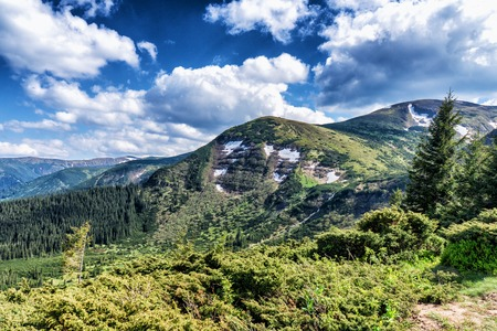 Idyllic view of mountain top under blue sky with white clouds in summer Karpaty Ukraine Hoverla