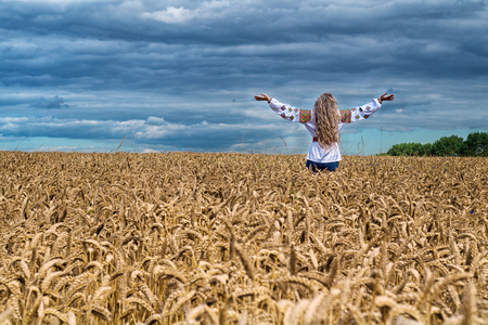 Rear view of blonde incognito girl with long hair standing among the wheat field, arms up to sky. Wearing ukrainian nationally suite and ethnick shirt and jeans. Panoramic view of idillyc landscape. Stock Photo