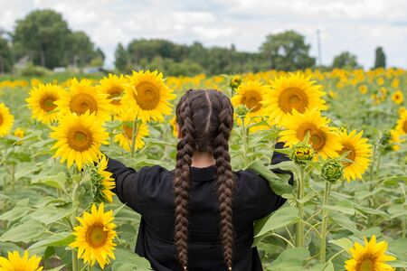 The model is back. In a field with blooming sunflowers. copy space. two pigtails.