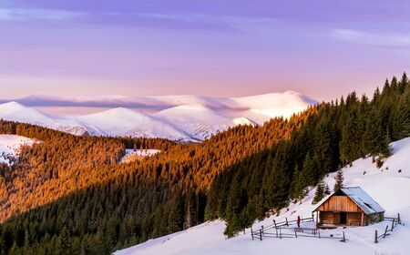 snowcapped: Wooden cottage in the background of a pink sky and snow-capped mountains in the morning sun. With men on the yard. And pine forest. Carpathian, Ukraine. Stock Photo