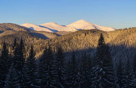 Winter view of three snow covered mountain peaks. Spruce forest in dark shadow.