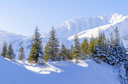 Bright winter mountain landscape. The trail in the snow.