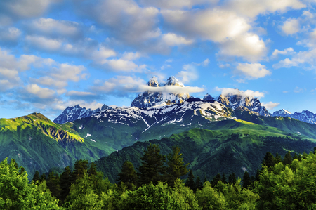 Snow-capped peaks on a background of white clouds and blue sky. Green hills and dense forests on the slopes. Morning sun shines on the rock wall. Mountain Ushba. Summer. Georgia.