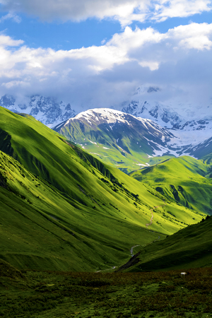 Green fields and hills leading to snow-covered mountains. White clouds are visible behind the lighted mountain top. Summer in Caucasian Georgia. Vertical orientation photo.
