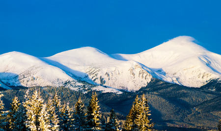 Morning mountain view. Three snowy peaks. Ukraine. Carpathians