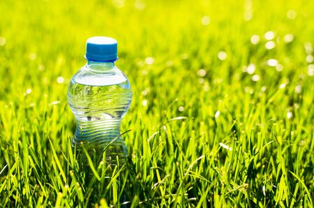 Water bottle in the grass. Transparent plastic water bottle in the grass with sunbeams. The rays of the sun shine on a water bottle