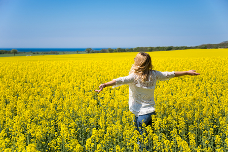Back view of woman standing in the yellow field under blue sky. Perfect background. Imagens