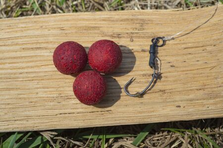 Robin Red Boilies with fishing hook. Fishing rig for carps, boilie rig, near the lake on a piece of wood