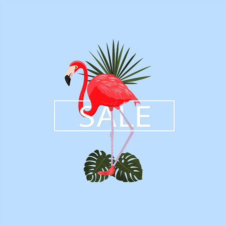 beach party: Summer tropical poster. Vector illustration.Summer pink background with elegant flamingo and tropical leaves. Exotic bird. Graphic design element. For sale, poster, t shirt. Typography design.