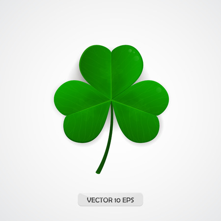 Shamrock. Clover icon. Patrick day symbol Vector illustration