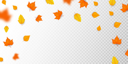 Autumn falling leaves. Autumnal foliage layout for banner, flyer, advertising. Vector illustration