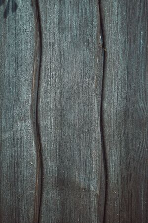 Blue wooden background. Timber texture. Vertical