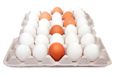 Eggs in paper tray isolated on white Banco de Imagens