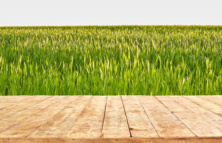 Empty wooden table with field landscape, background