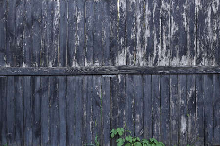 Old wooden background. Rustic style