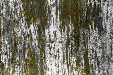 Old grungy texture, gray annd green concrete wall background