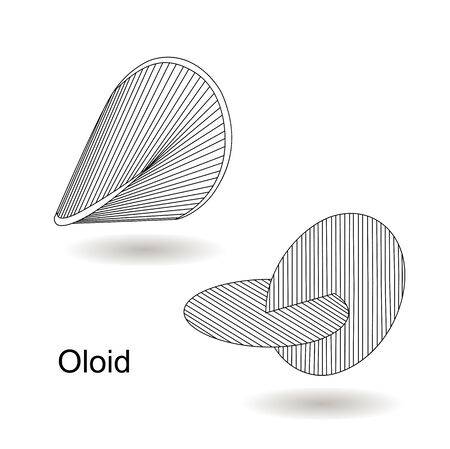 Vector illustration of aa three-dimensional curved geometric object oloid