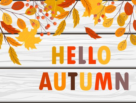 Hello autumn vector banner with hand drawn leaves and lettering on wooden background