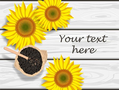 Vector illustration of sunflower flowers and seeds on grey wooden table, place for text
