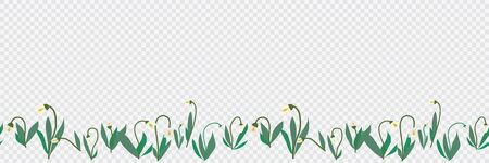 Seamless transparent vector border of hand drawn spring snowdrops flowers