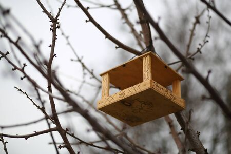 DIY, creative hand made wooden bird house / bird feeder hanging on the tree in a park