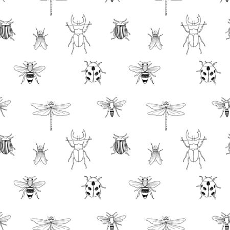 Vector seamless black and white pattern of different hand drawn doodle isolated insects Stock Illustratie