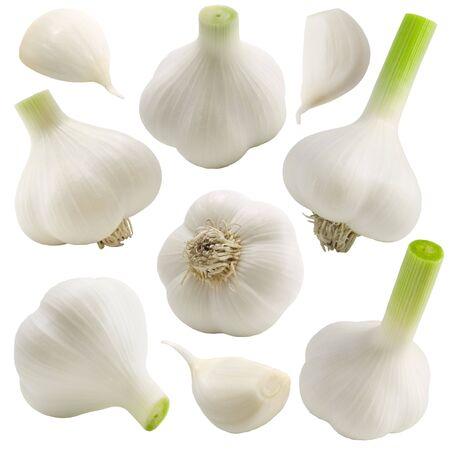 Garlic set on the white background (isolated). photo