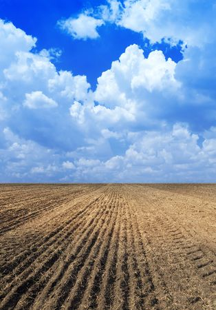 cultivated land: Ploughed field.