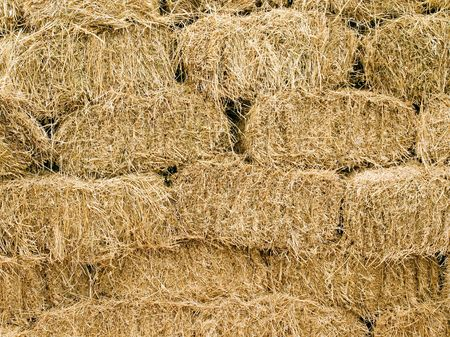 Hay blocks closeup background. photo