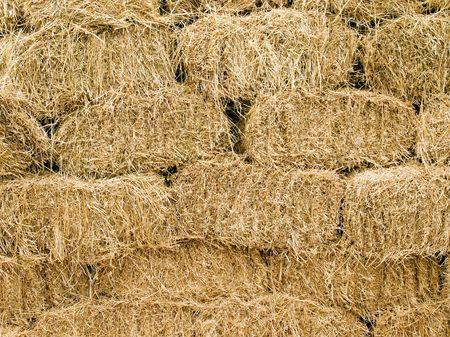 bale: Hay blocks closeup background. Stock Photo