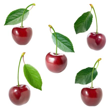 singly: Cherry set. Stock Photo