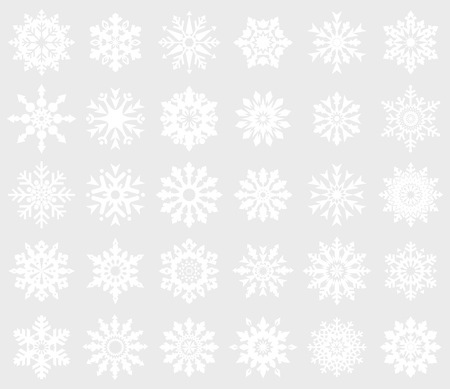 30 white snowflakes on gray background (isolated). Vector