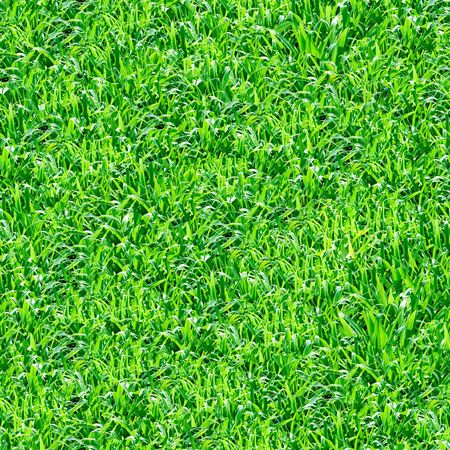 Seamless pattern - green grass. photo