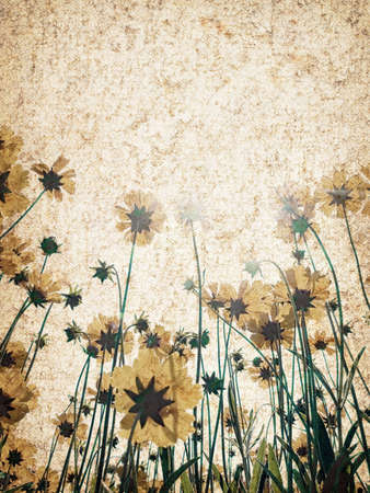 Vintage canvas with flowers. photo