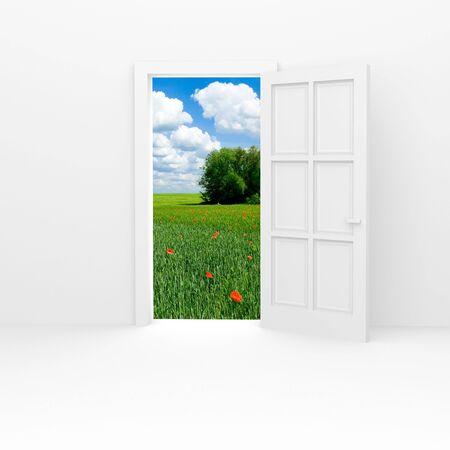White door and green field.