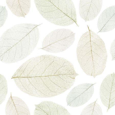 Dried leafs seamless background. Banco de Imagens