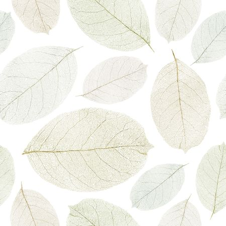 Dried leafs seamless background. Stock Photo