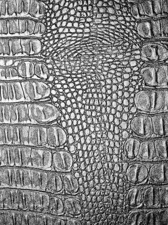 Black crocodile leather texture closeup background.