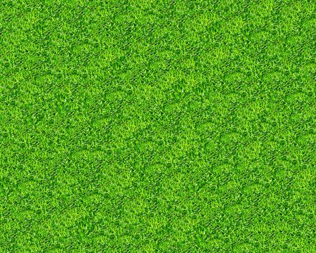 Green grass seamless pattern - texture pattern for continuous replicate. See more seamless backgrounds in my portfolio. Banco de Imagens