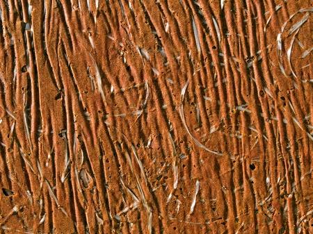 impregnated: Marrone photofibre superficie astratta closeup sfondo. Archivio Fotografico