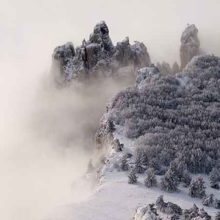 rigorous: Snowy mountains with trees and fog. Stock Photo