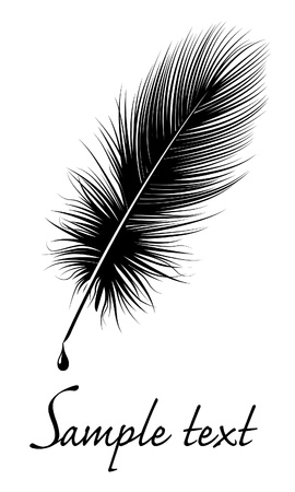 Black feather on white background with space for text. Ilustra��o