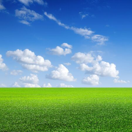 Green field, blue sky with white cloud Stock Photo - 9549711